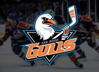 San Diego Gulls Named AHL Team of The Year!
